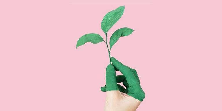 Что означает ESG-инвестирование и почему оно быстро набирает популярность